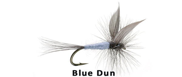 Blue Dun - Flytackle NZ