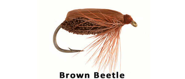 Brown Beetle - Flytackle NZ