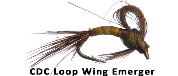 CDC Loop Wing Emerger - Flytackle NZ