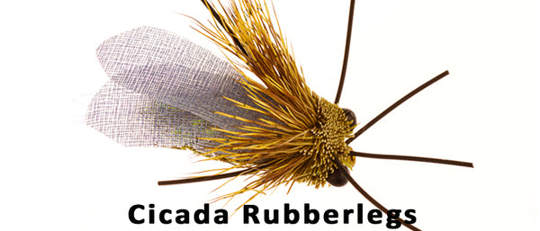 Cicada Rubberlegs - Flytackle NZ