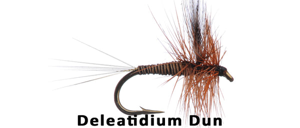 Deleatidium Dun - Flytackle NZ