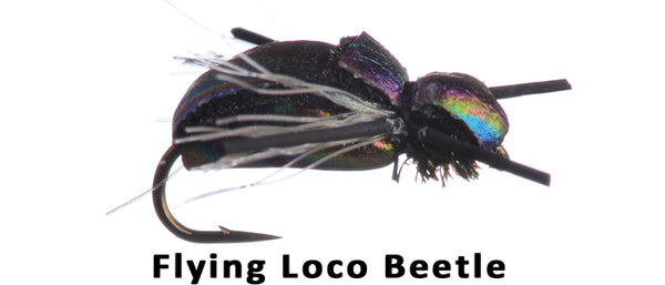 Flying Loco Beetle #14 - Flytackle NZ