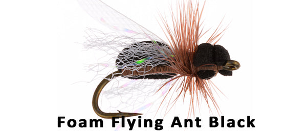 Foam Flying Ant #16 - Flytackle NZ