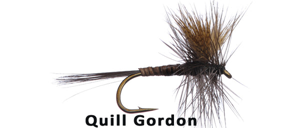 Quill Gordon - Flytackle NZ