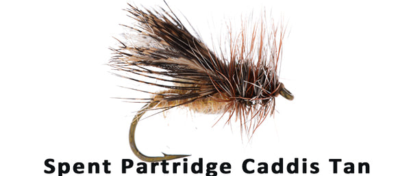 Spent Partridge Caddis - Flytackle NZ