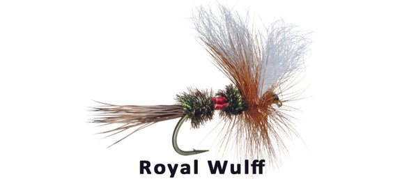 Royal Wulff - Flytackle NZ