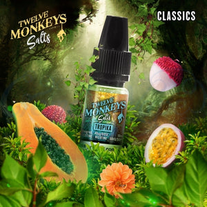 Tropika NS20 By Twelve Monkeys