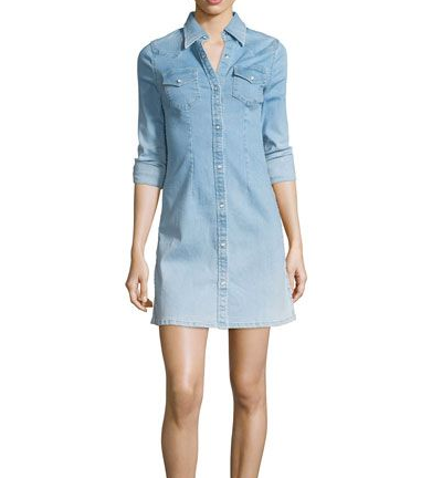 AG Jaqueline Button Up Dress - crane