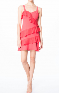Parker Jocelyn Combo Dress - strawberry