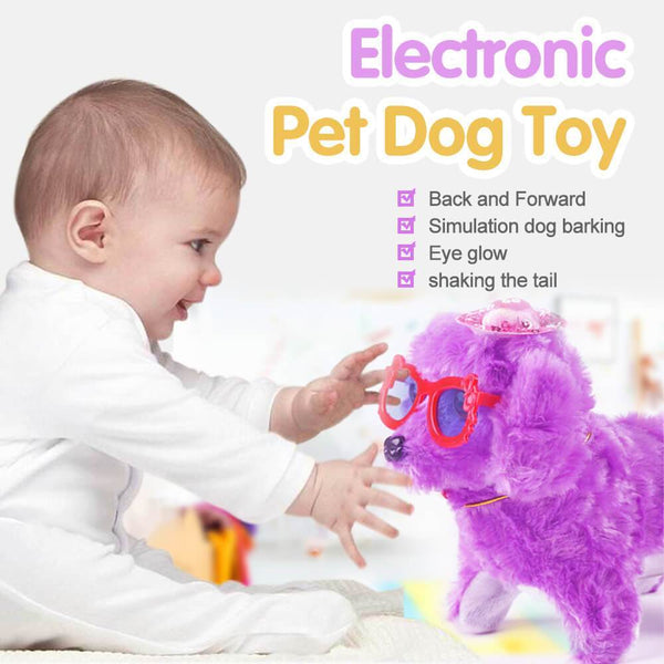 Electronic Pet Dog Toy
