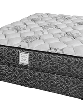 Queen Special Edition Clearance Adjustable Bed Package