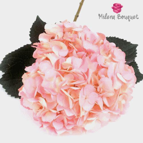 Light Pink Hydrangea Flower - Milena Bouquet