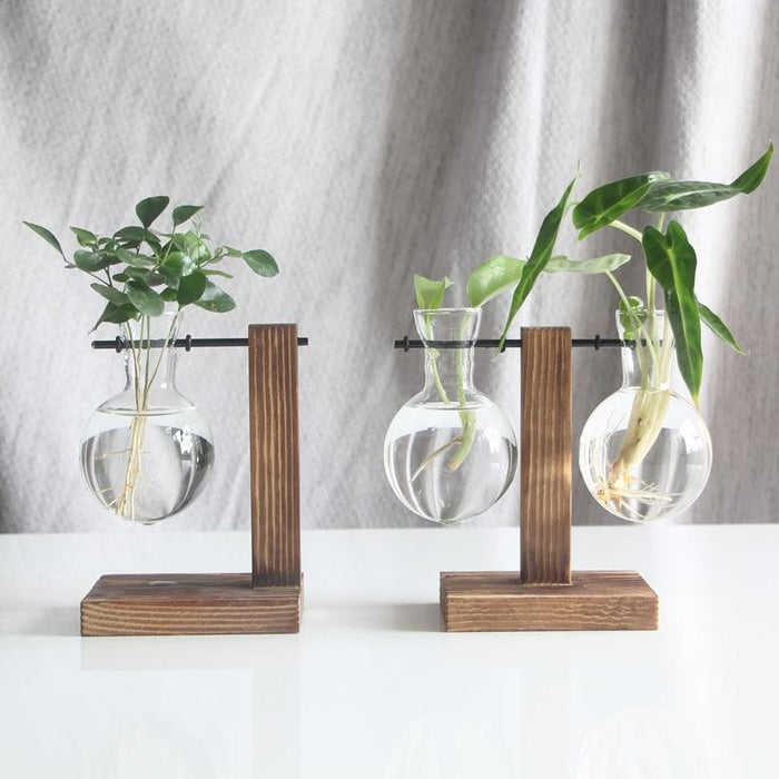 Hydroponic Glass Flower Vase - Milena Bouquet