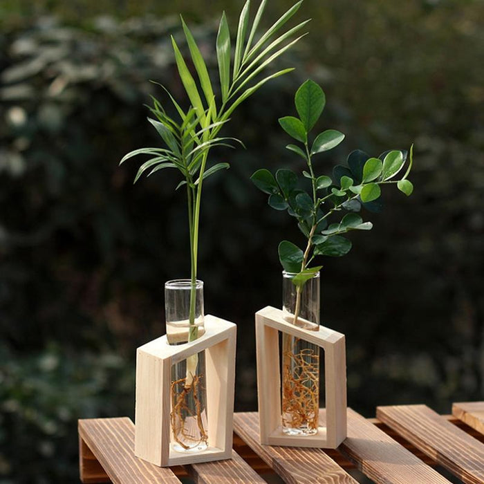 Crystal Test Tube Vase in Boxed Wooden Stand - Milena Bouquet
