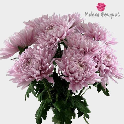 Football Mum Lavender - Milena Bouquet