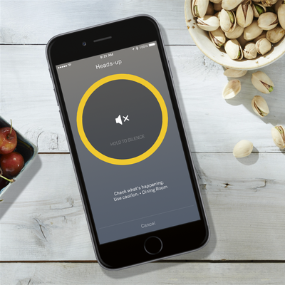 Nest Protect Wi-Fi Smoke and Carbon Monoxide Alarm App Lifestyle