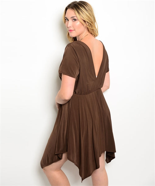 Plus Size Brown Dress