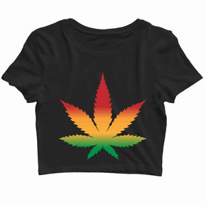 Music Artists WEED AND REGGAE IS ALL I NEED Custom Printed Graphic Design Crop Top T-Shirt for Women - Aaramkhor