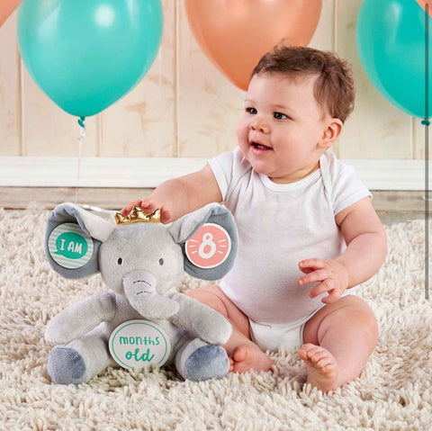 My First Elephant Plush Plus Baby Milestone Makers