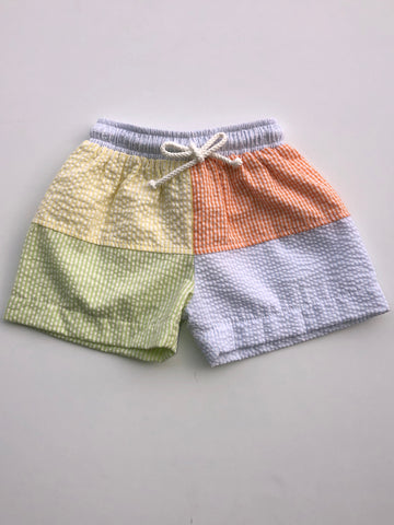 Multi Block Boys Swim Trunks
