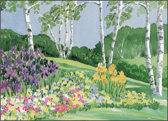 Iris and Birches Print