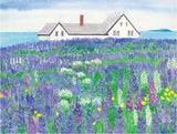 Field of Lupine Print