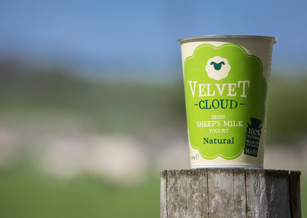 Velvet Cloud Sheep's Milk Yogurt | 450g Pot