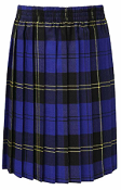 Trenode Tartan Pleat Skirt