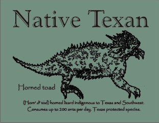 Native Texan Horned Toad (wholesale)