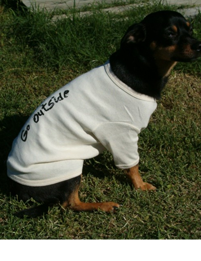 Organic cotton doggie t-shirt