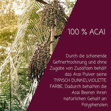 Laden Sie das Bild in den Galerie-Viewer, Bio Acai Pulver - myfruits Shop