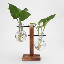 Load image into Gallery viewer, Glass & Wood Terrarium Planter