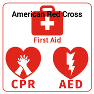 Adult First Aid/CPR/AED Online