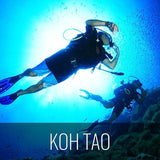 Diving Koh Tao - Discover the open sea - kohsamui.tours