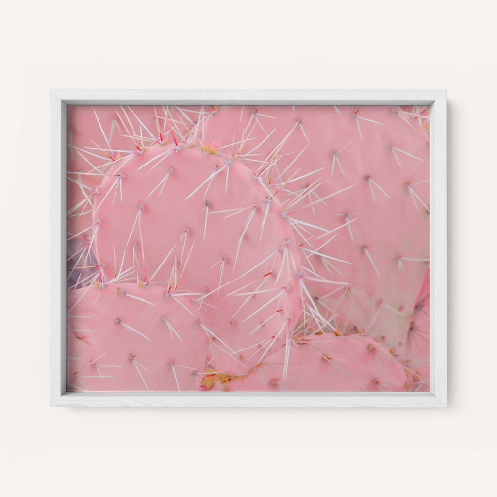 "Low Saturn ""Bubblegum Pricklies"" - Fine Art Print"