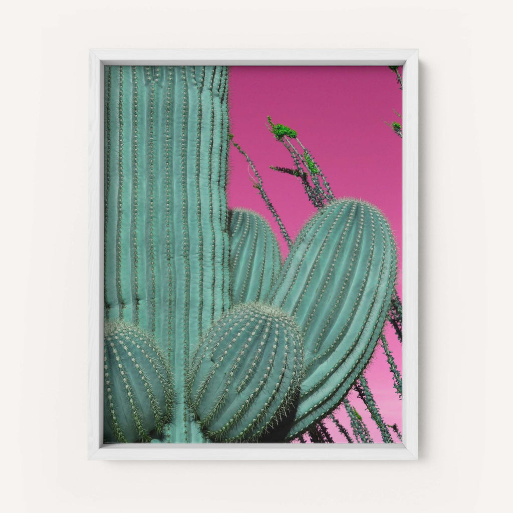 "Low Saturn ""Saguaro Dream"" - Fine Art Print"