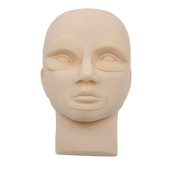 IPM Model Head Without Eyes and Lips
