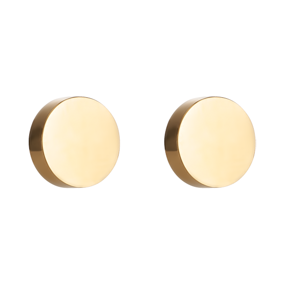 Earrings Round stainless steel gold