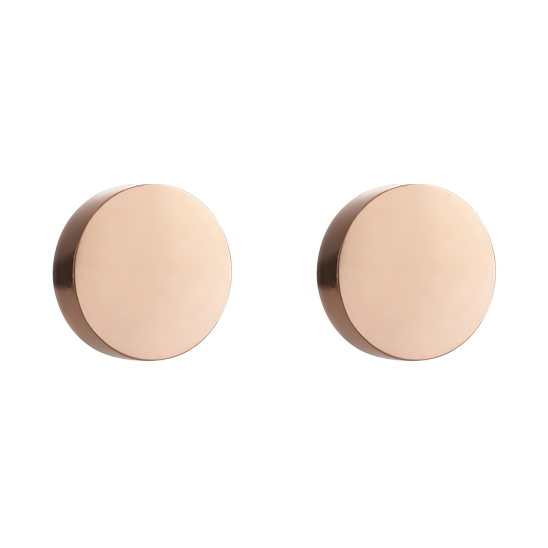 Earrings Round stainless steel rose gold