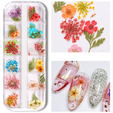 Load image into Gallery viewer, Mix Dried Flowers and 60g Clear Polygel Combo Set