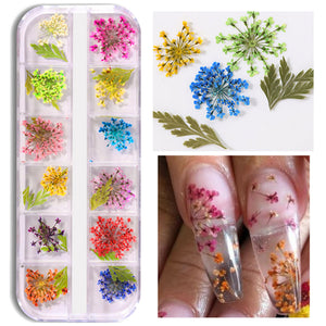Mix Dried Flowers and 60g Clear Polygel Combo Set