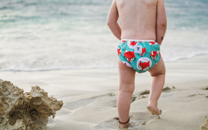 Reusable Swim Diaper Bundle- Set of 2 - Flamingo & Fox
