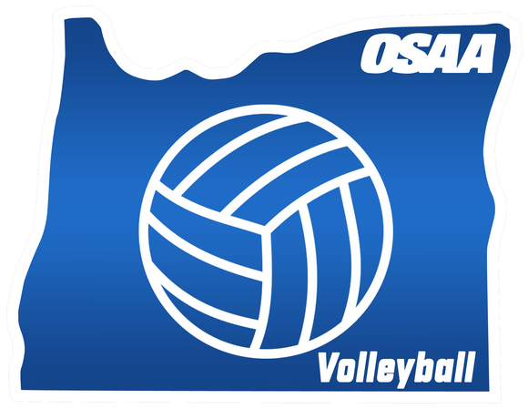 Volleyball Commissioner - Order deadline October 19, 2020