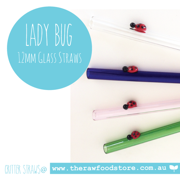 Lady Bug - 12mm Glass Straw