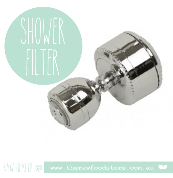 Enviro Products Shower Filter (Chrome) at The Raw Food Store