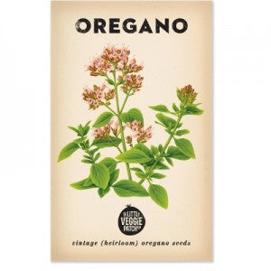 Oregano 'Common' Heirloom Seeds