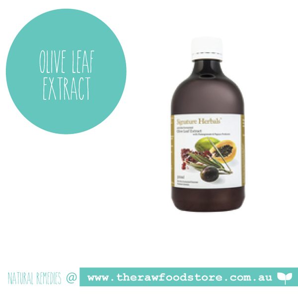 Olive Leaf Probiotic Extract 500ml