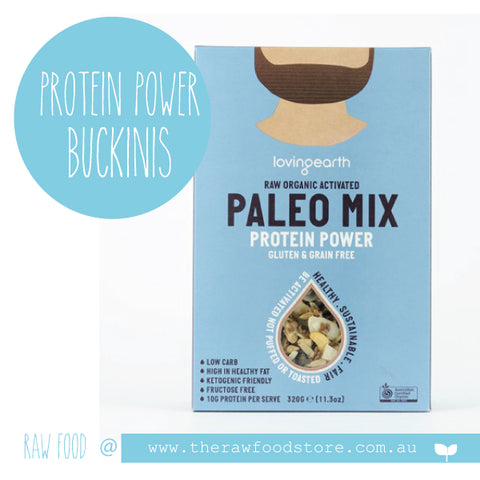 Paleo - Protein Power Mix 320g - Loving Earth