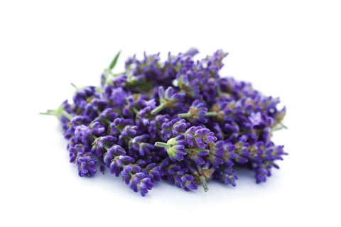 Lavender 100% Pure Essential Oil