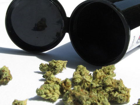 High Maintenance: Caring for Your Cannabis Flower